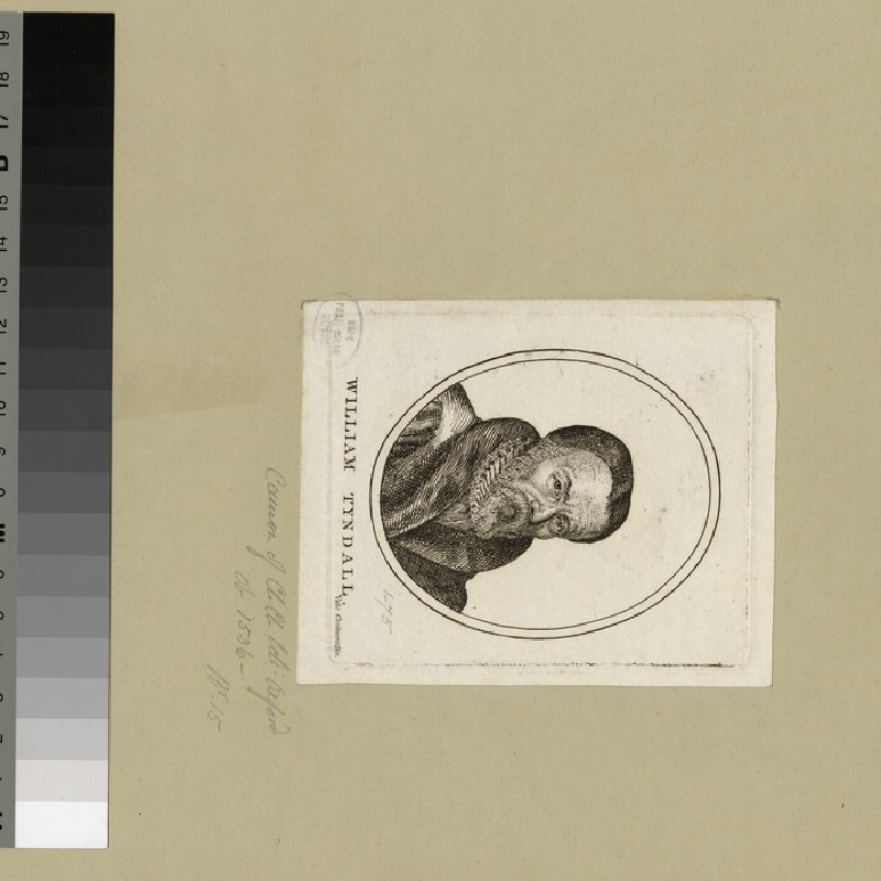 Portrait of W. Tyndale (WAHP25630)