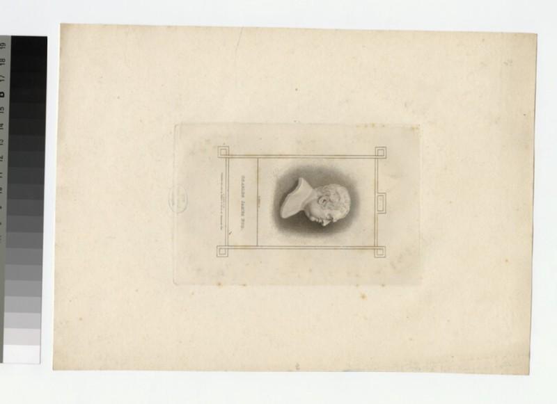 Portrait of C. J. Fox (WAHP27137)