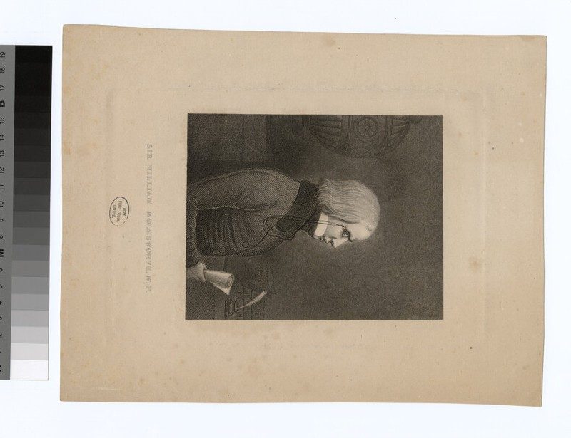 Portrait of W. Molesworth (WAHP27942)