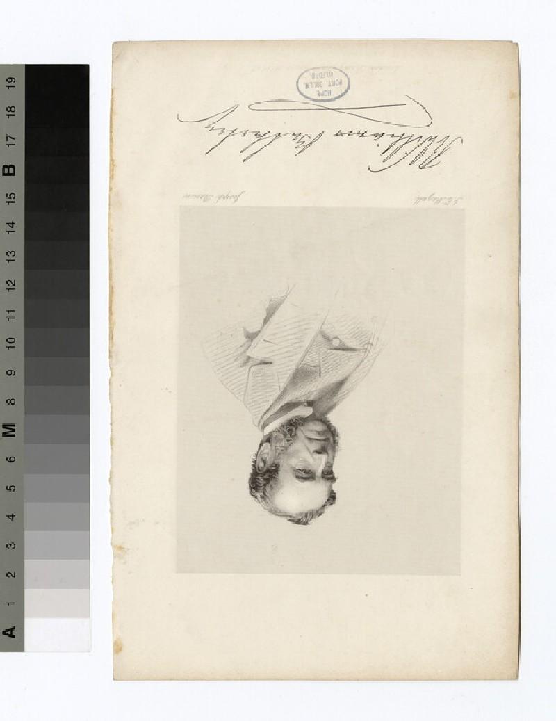 Portrait of R. William Bulkeley