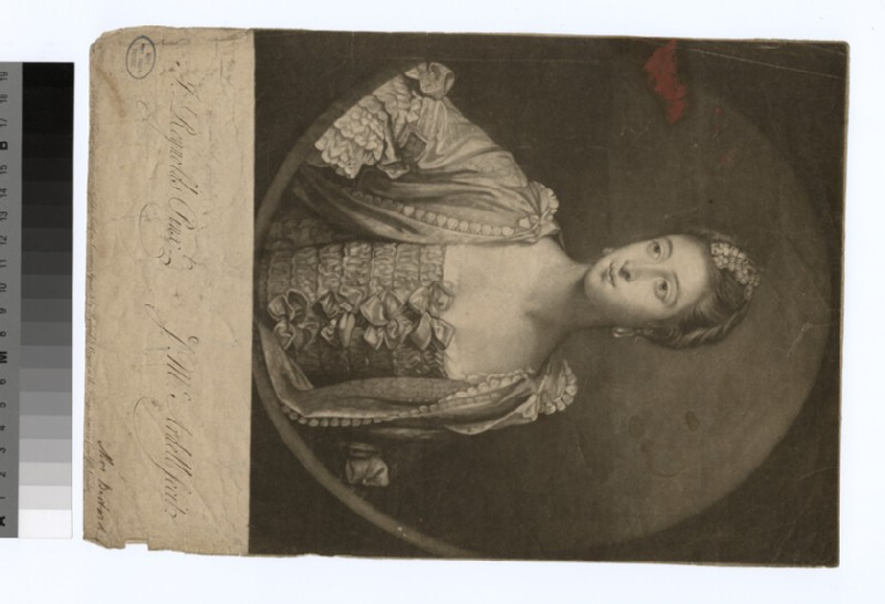 Portrait of Mrs Bastard