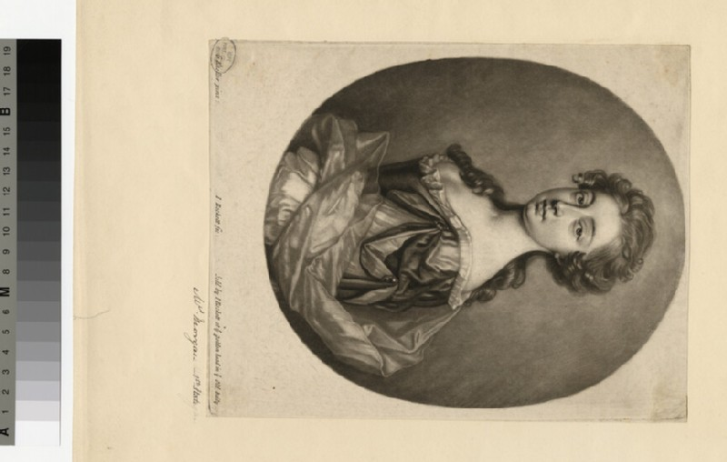 Portrait of Mrs Morgan (WAHP29812)