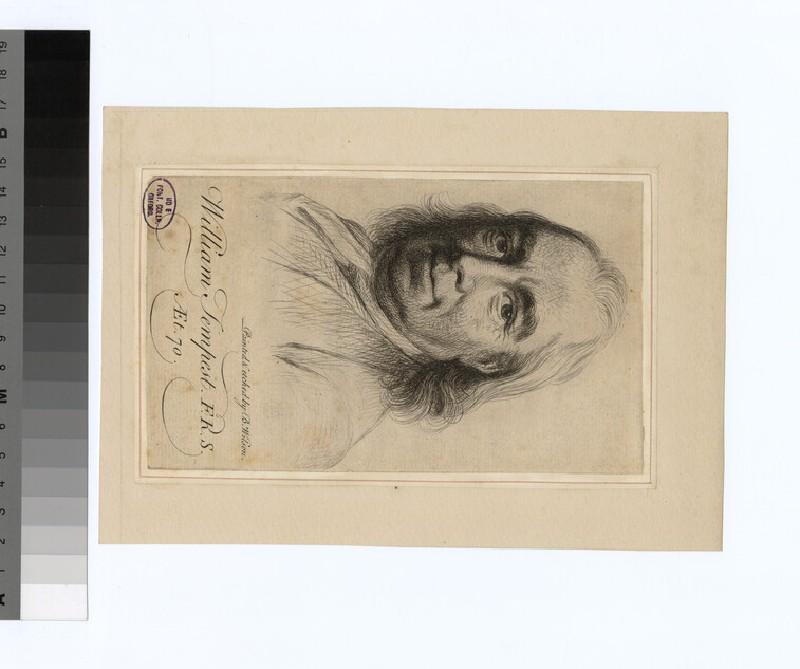 Portrait of W. Tempest