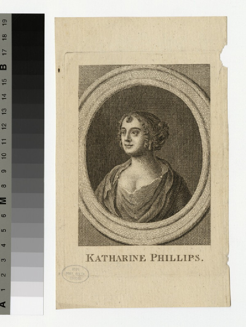 Portrait of K. Phillips (WAHP33524)
