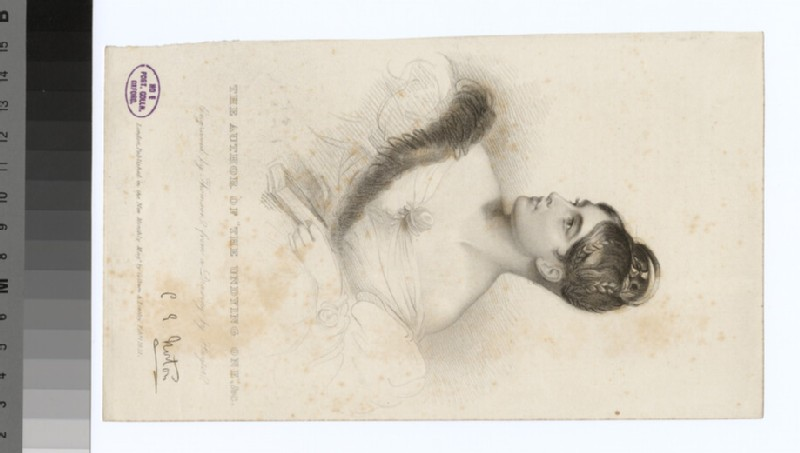 Portrait of C. Norton