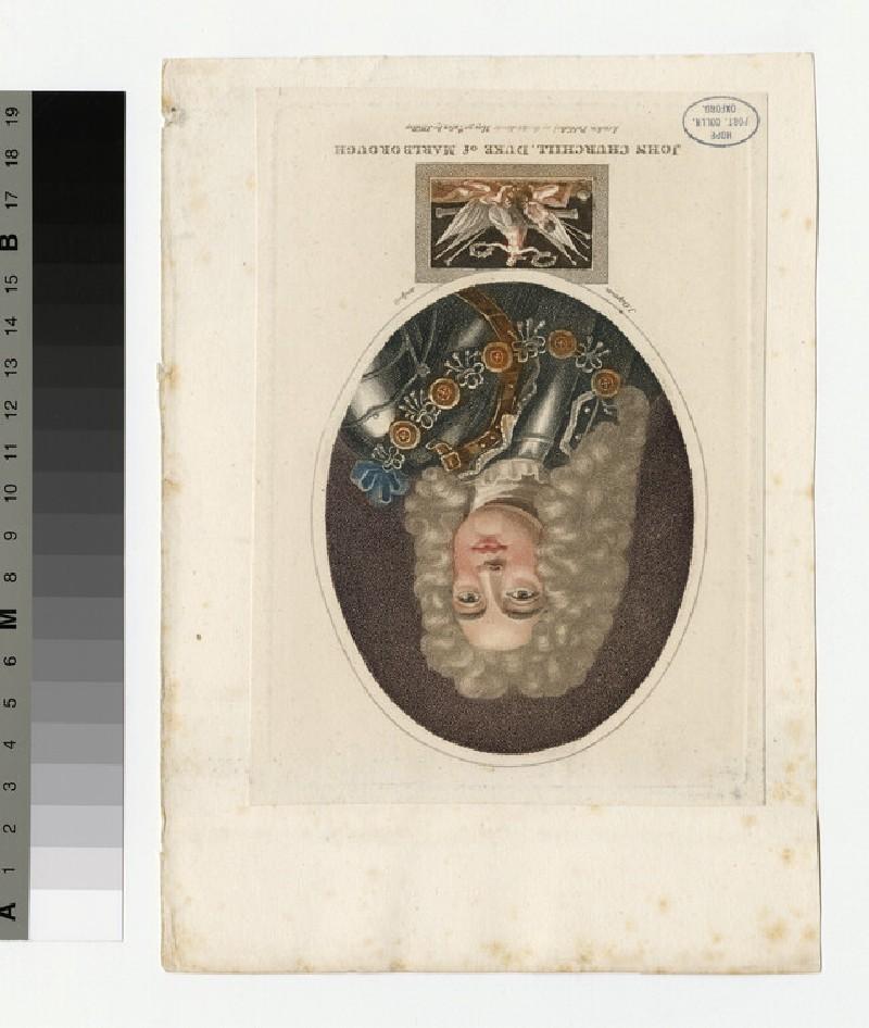 Portrait of Marlborough (WAHP34957)