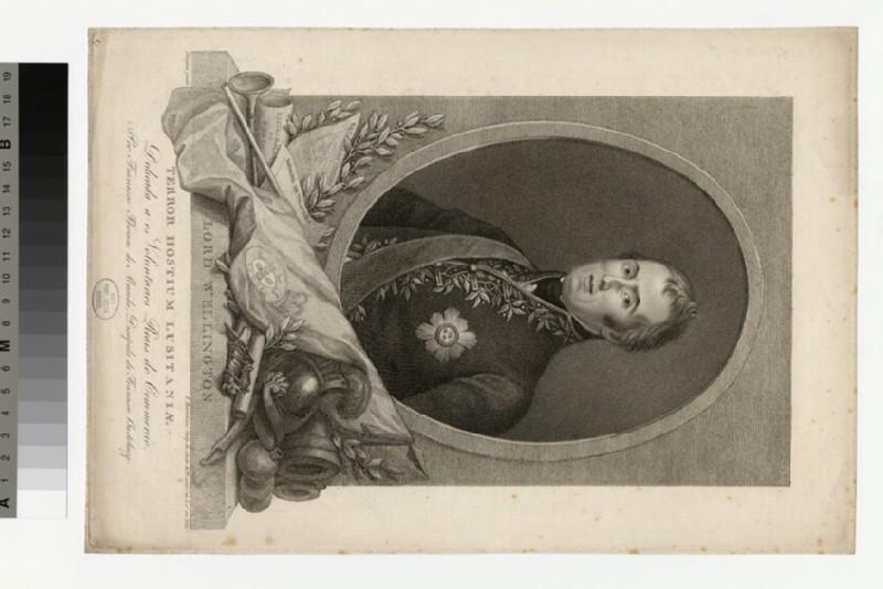 Portrait of Wellington (WAHP35908)