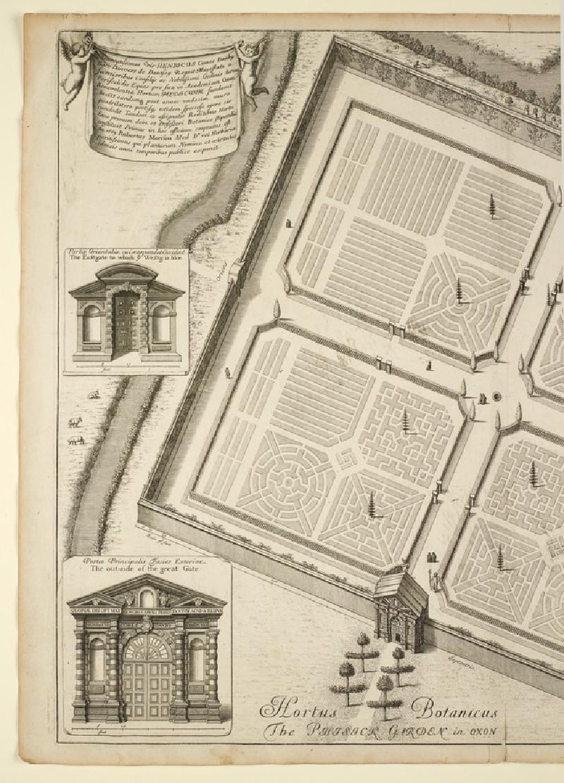 Hortus Botanicus, or the Phisick Garden (Botanic Garden), from 'Oxonia illustrata' (1675)
