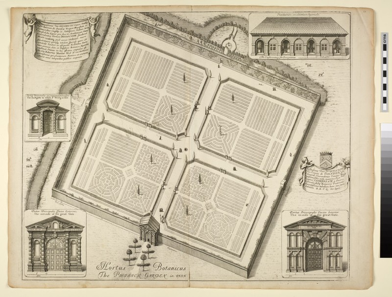 Hortus Botanicus, or the Phisick Garden (Botanic Garden), from 'Oxonia illustrata' (1675)