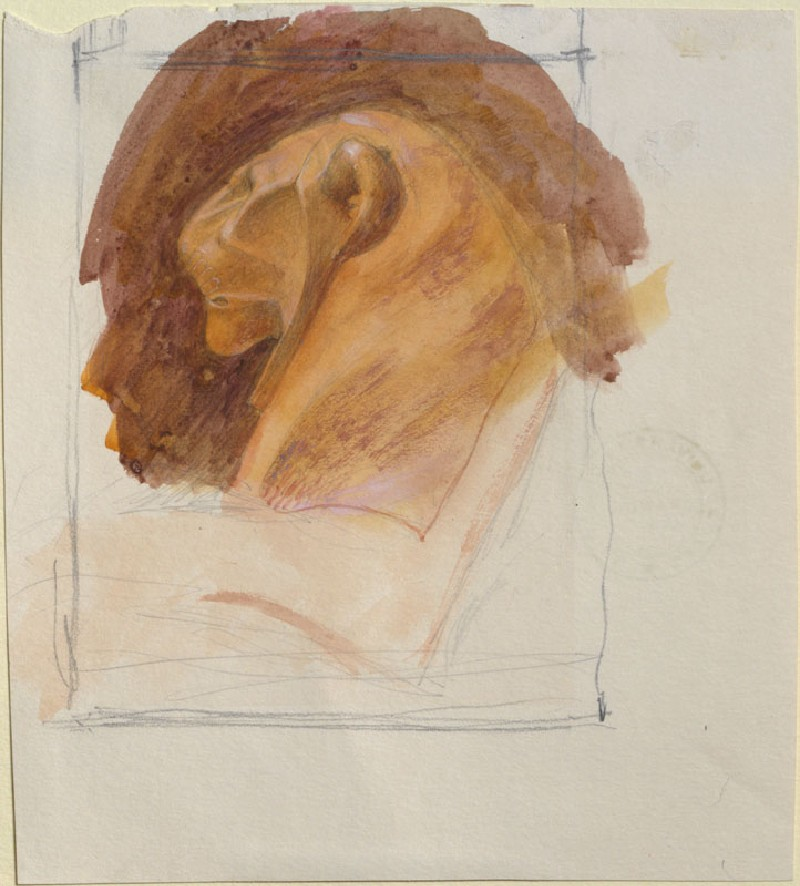 Drawing of a Lion's Profile, from an Egyptian Sculpture (WA.RS.ED.156, Ruskin, John - Drawing of a Lion's Profile, from an Egyptian Sculpture ())