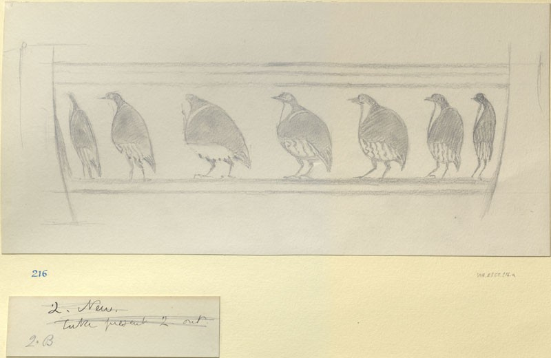 Perspective Study: Birds in Procession on a Greek Vase (WA.RS.ED.216.a, Burgess, Arthur - Perspective Study: Birds in Procession on a Greek Vase ())