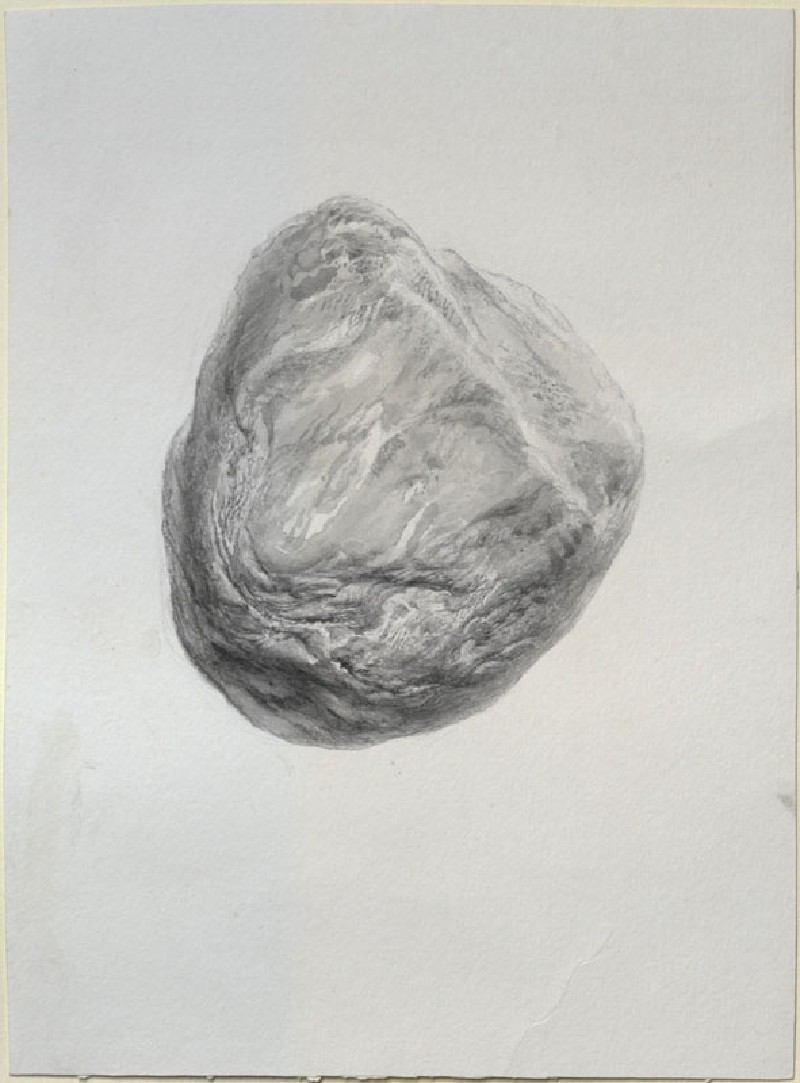 Study of a Piece of rolled Gneiss (WA.RS.ED.276, Ruskin, John - Study of a Piece of rolled Gneiss ())