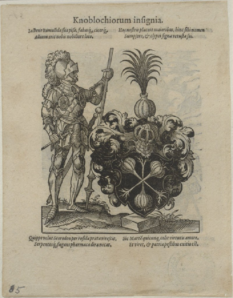 Recto: The Arms of the Knobloch Family 