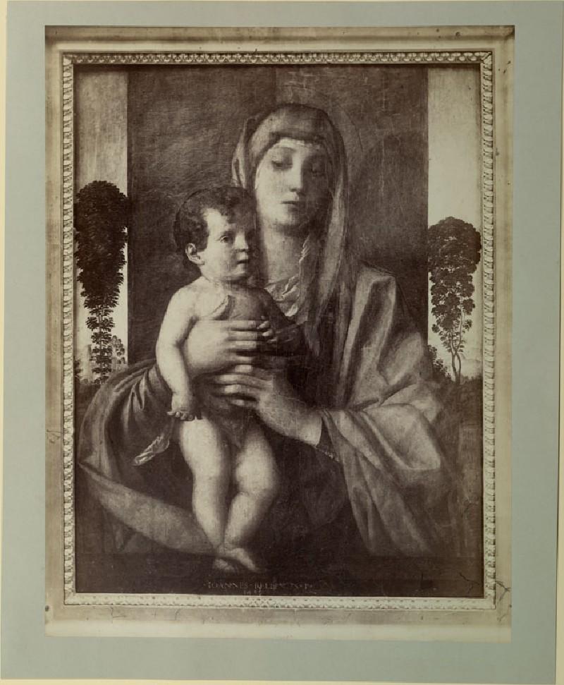 Photograph of Giovanni Bellini's 'Madonna degli Alberetti'