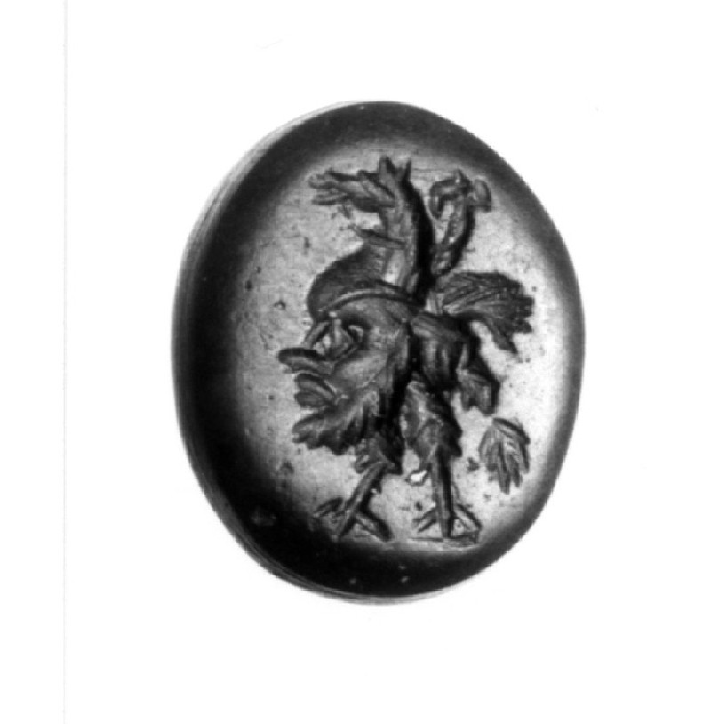 Intaglio gem, combination hippalektryon