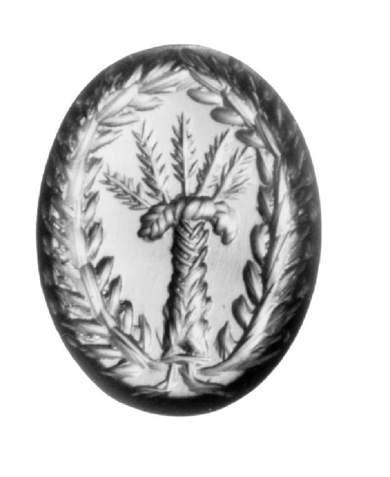 Intaglio gem, palm tree (AN1890.240, record shot)