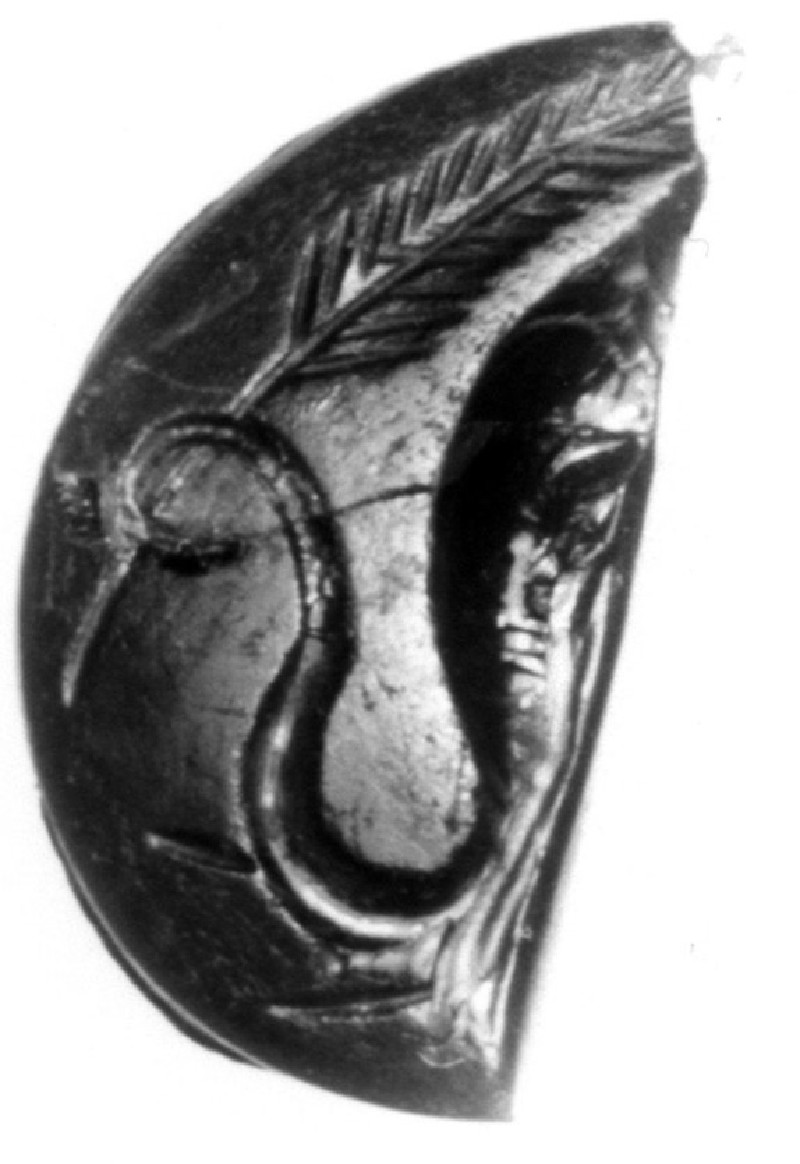 Intaglio gem, combination elephant and palm branch (AN1941.344, record shot)