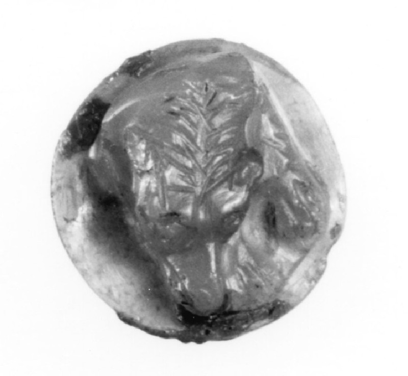 Cameo depicting the head of a sleeping hound (AN1941.409, record shot)
