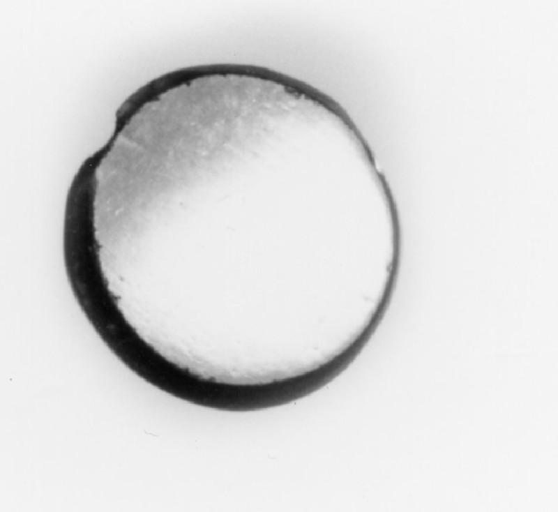 Intaglio gem, portrait head (AN1941.525, record shot)