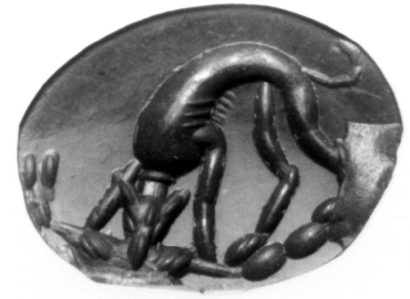 Intaglio gem, Hound and hare (AN1941.573, record shot)