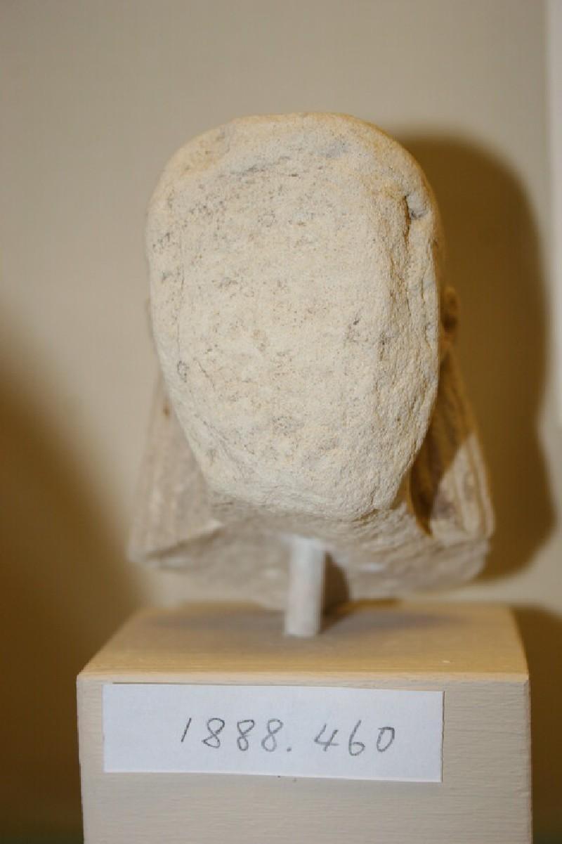 Head of a female statuette (AN1886.460, record shot)