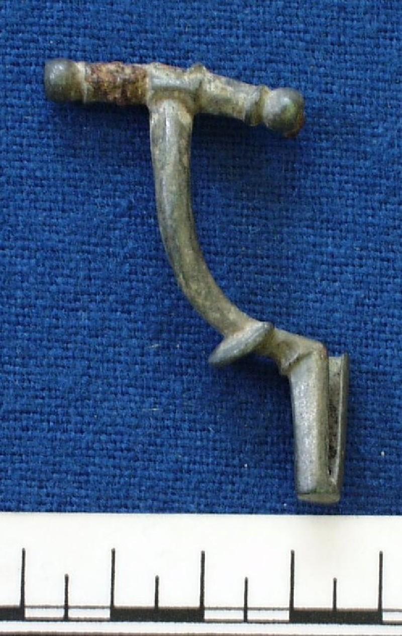Fibula (AN1914.416, record shot)