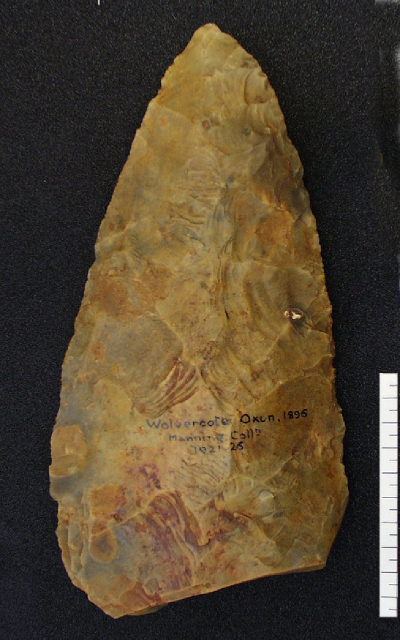Acheulean handaxe with a plano-convex form (AN1921.26, record shot)