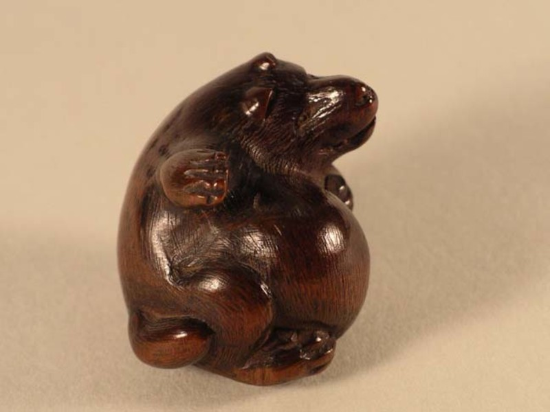 Netsuke in the form of a badger (tanuki) beating his inflated belly