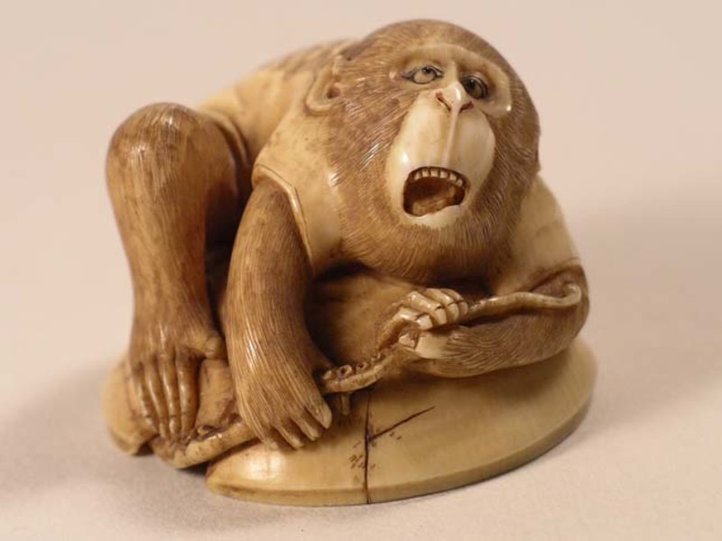 Netsuke in the form of a monkey sitting on a cracked bowl, pulling on a tentacle of an octopus which is hiding underneath
