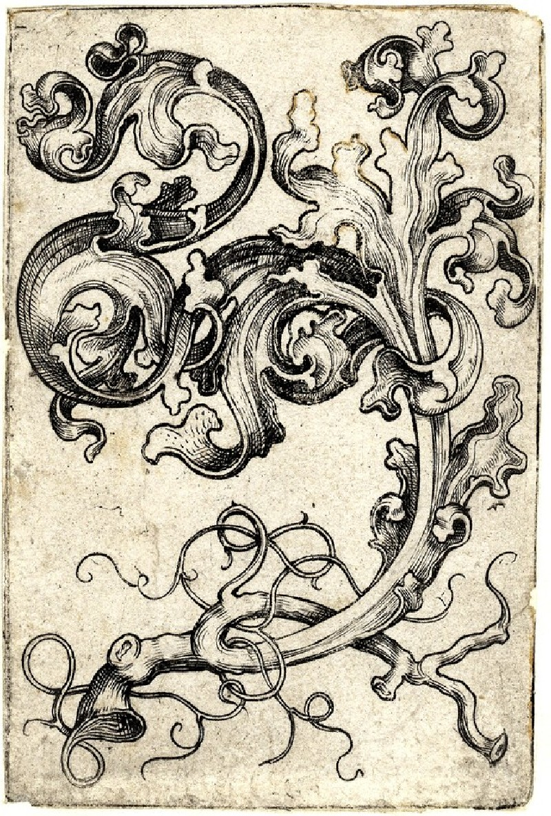 An ornament sheet with a tendril