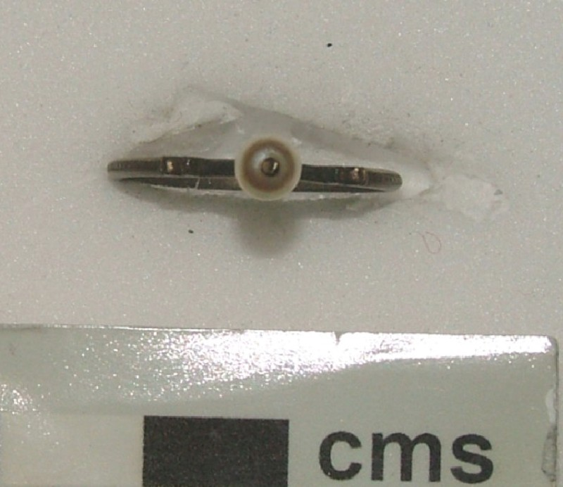 Stirrup ring (WA1897.CDEF.F375, record shot)
