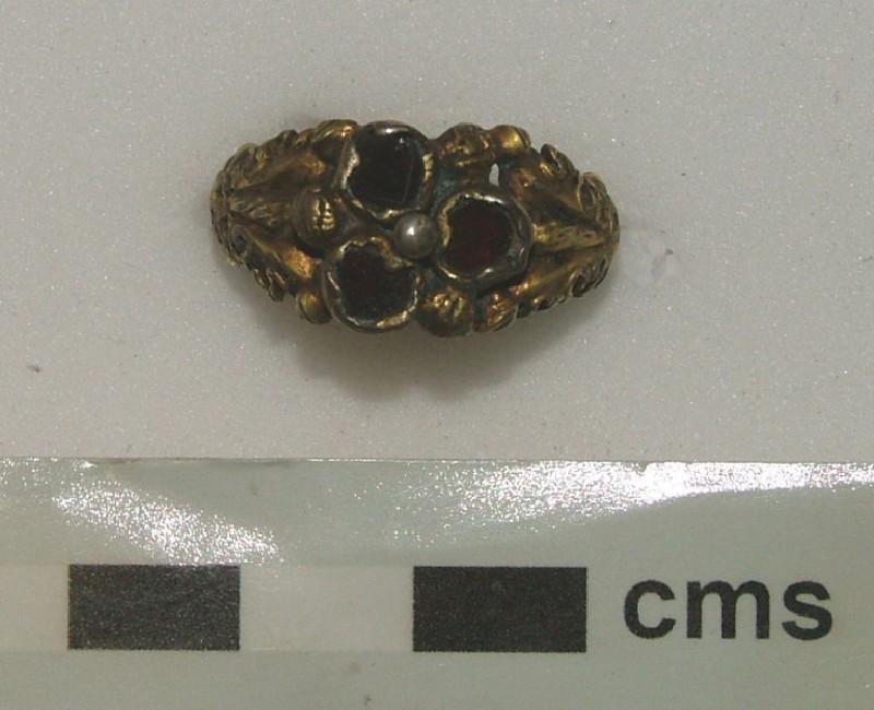 Fede ring (WA1897.CDEF.F531, record shot)