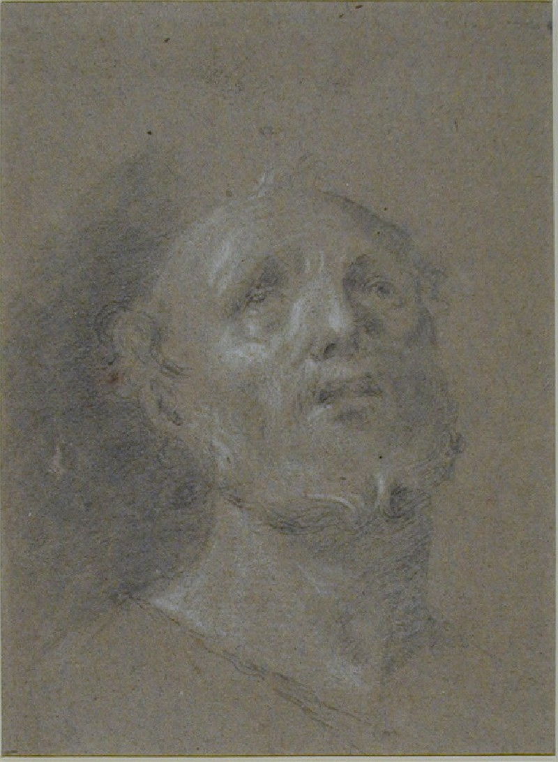 Recto: Head of a bearded Man<br />Verso: Partial study of a head