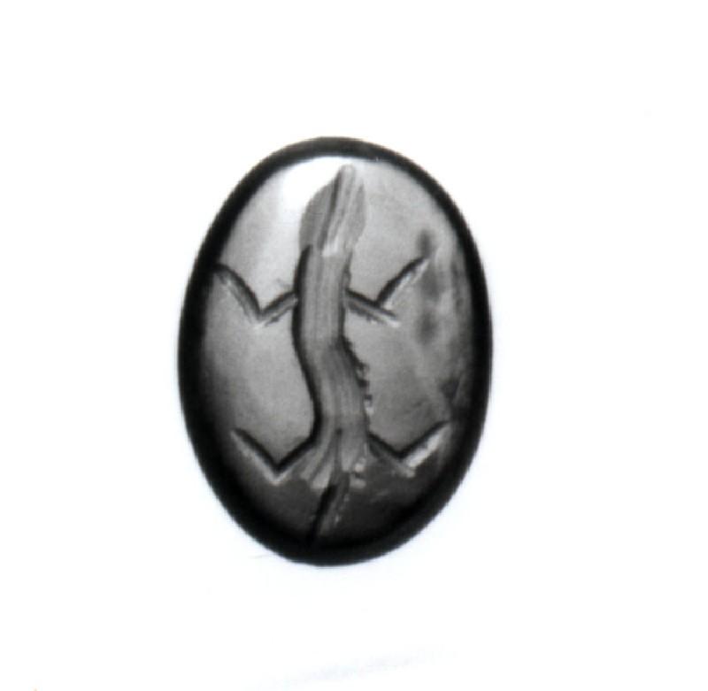 Intaglio gem, lizard (AN1890.265, record shot)