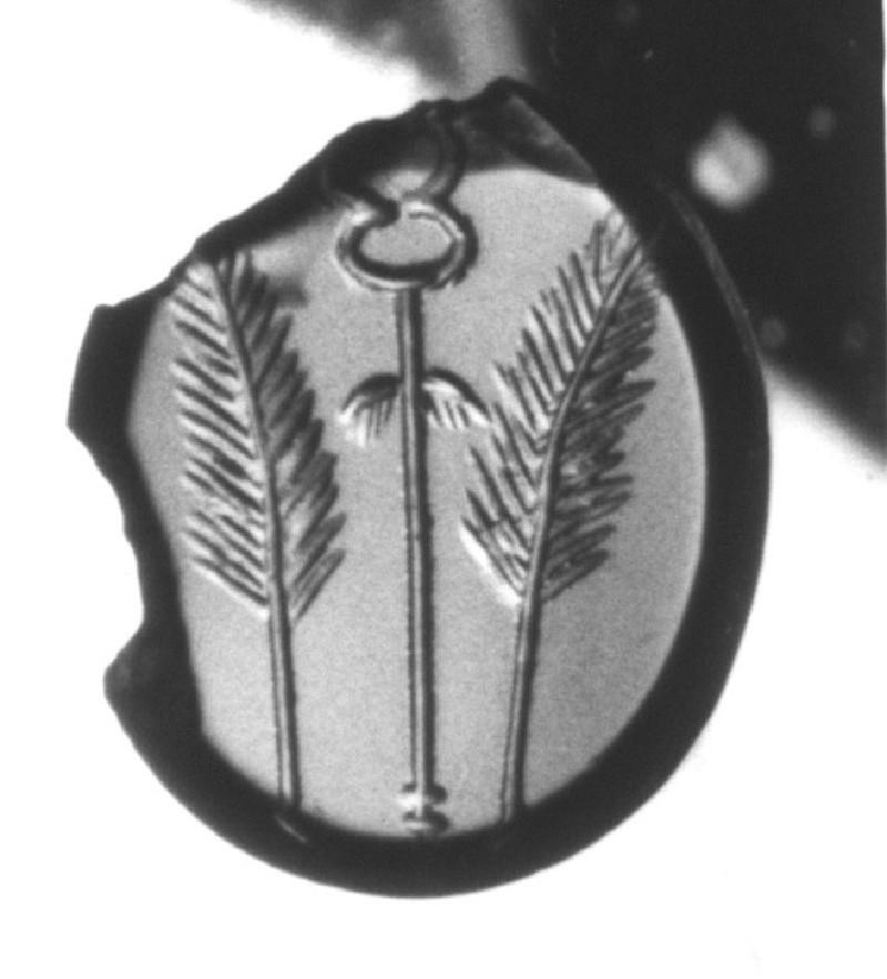 Intaglio gem, palm branches (AN1892.1267, record shot)