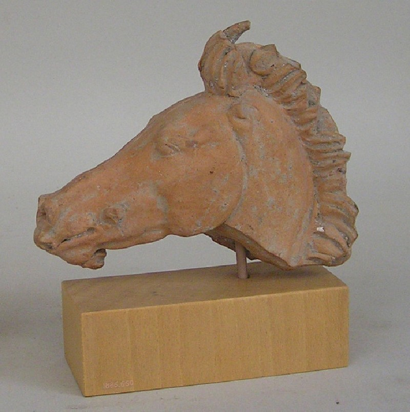 Terracotta horse's head (AN1886.650, AN.1886.650, record shot)