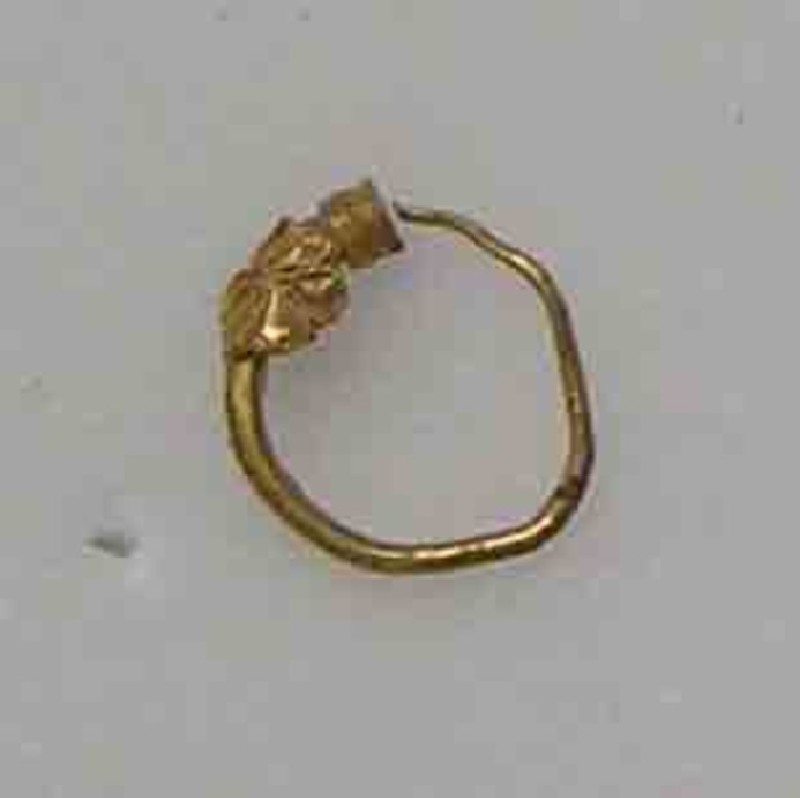 Tiny gold hoop earring terminating in small collar with a rosette ornament (AN1888.1207, record shot)