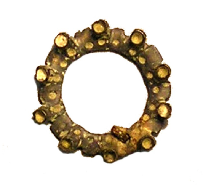 Annular brooch (AN1927.6292, AN.1927.6292, record shot)