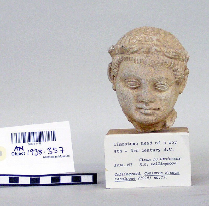 Head of boy with fillet, fragment of limestone votive sculpture (AN.1938.357)
