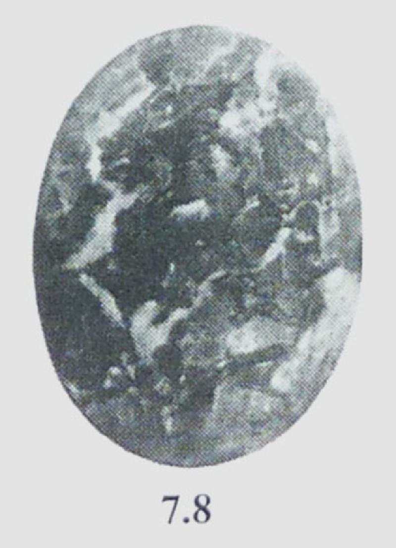 Intaglio gem, herdsman (AN.1941.618)