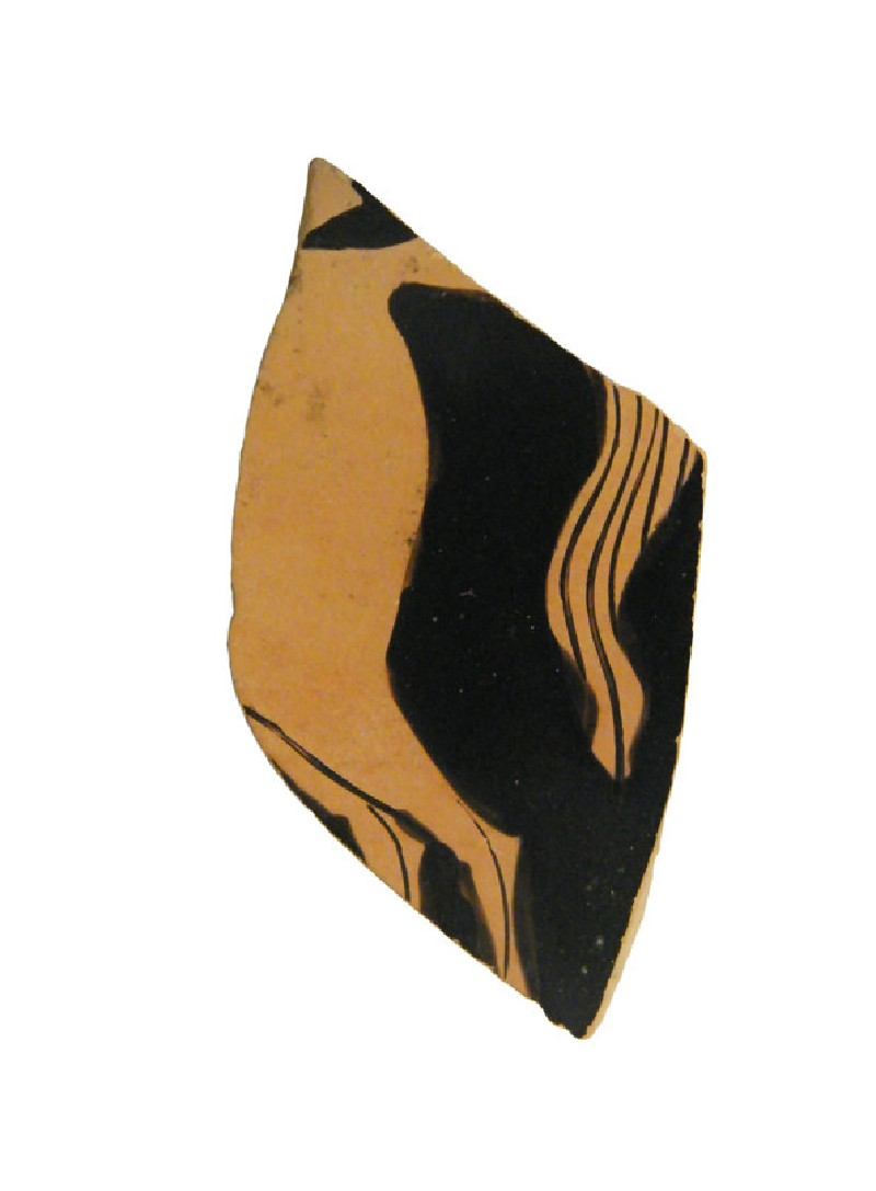 Attic red-figure pottery cup fragment depicting a horse-riding scene (AN1956.254, AN.1956.254.1, record shot)