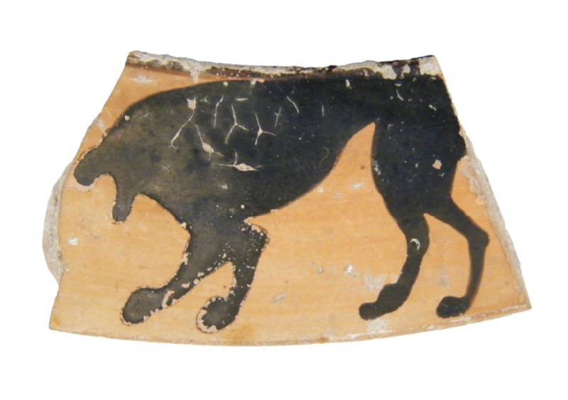 Attic black-figure pottery krater sherd (AN1966.889, AN.1966.889, record shot)