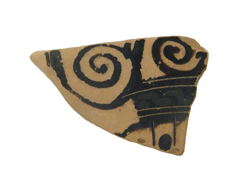 Attic black-figure pottery amphora sherd (AN1966.994, AN.1966.994, record shot)