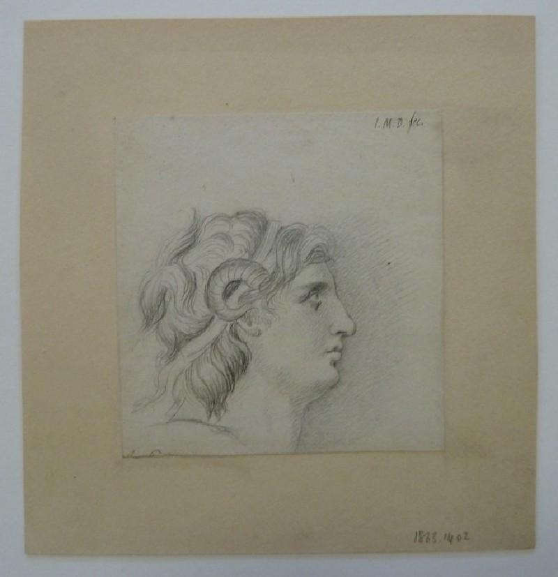 Study of a classical Head (WA1863.1402, record shot)