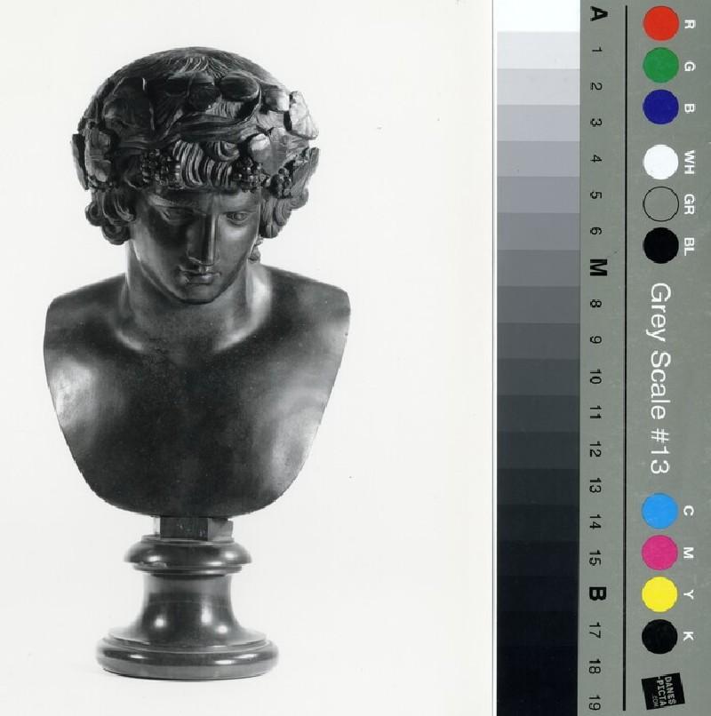 Bust of Bacchus (WA1889.CDEF.B404, record shot)
