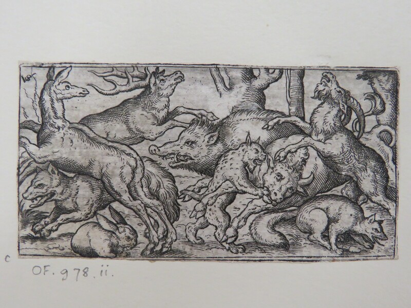 Wild boar in centre chasing a deer surrounded by other animals including a jaguar biting a cow, a moose, a fox, wolf, rabbit, and a ram, from Douce Ornament Prints Album I