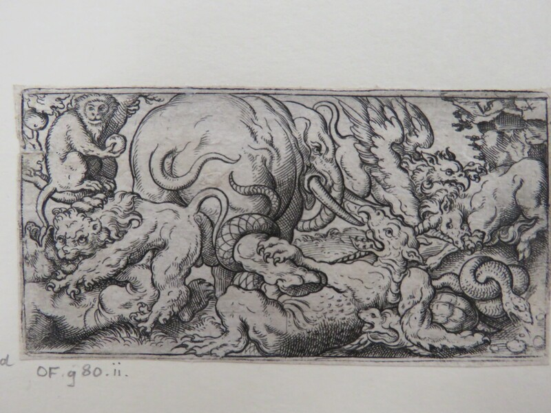 Elephant fighting dragon at centre surrounded by other animals including a fighting griffin and unicorn, a fighting lion and a bear, a turtle, and a monkey, from Douce Ornament Prints Album I (WA1915.84.71.4, WA1915.84.71d, record shot)