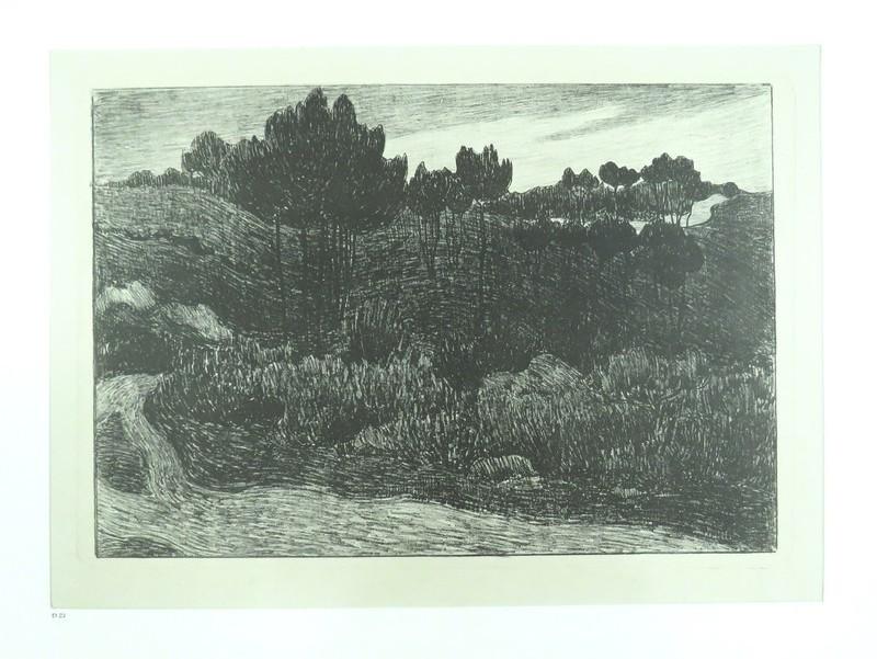 On the edge of Exmoor (WA1976.96, record shot)
