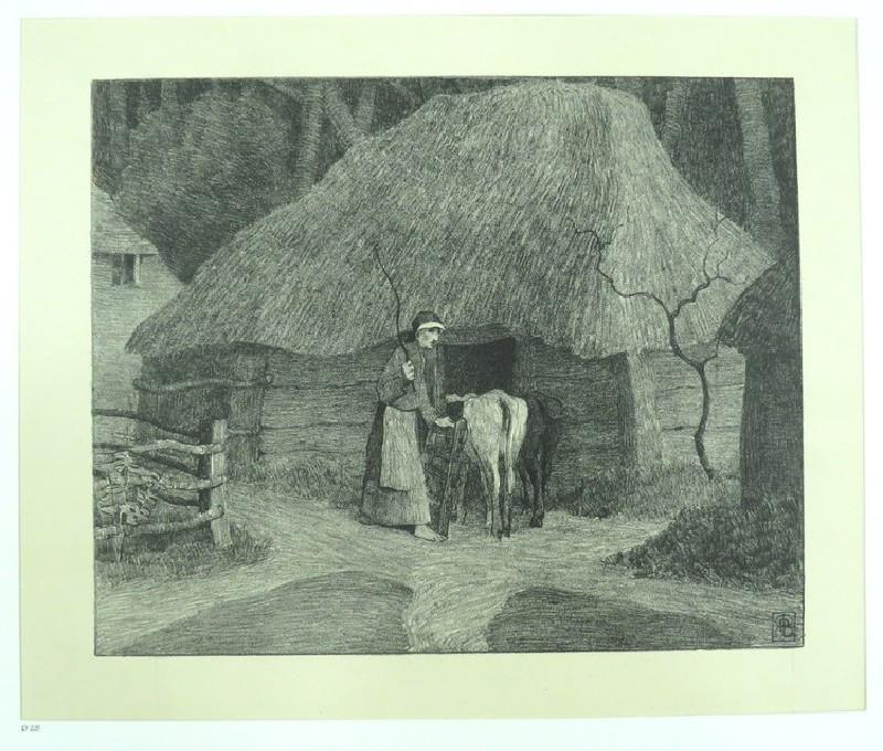 Bringing the calves come ( Poland 1901)