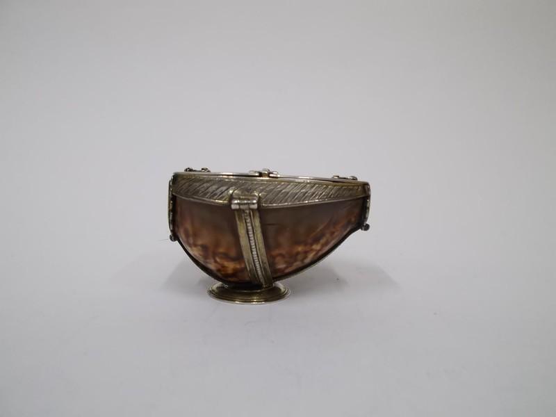 Cowrie shell box